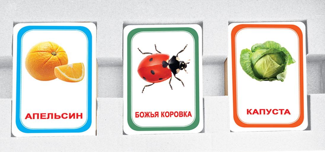 Парочки выпуск 3 (Мемо для детей) Вундеркинд с пеленок Подарочный набор развивающих карточек 60 шт.  4612731631819 фотографии и картинки