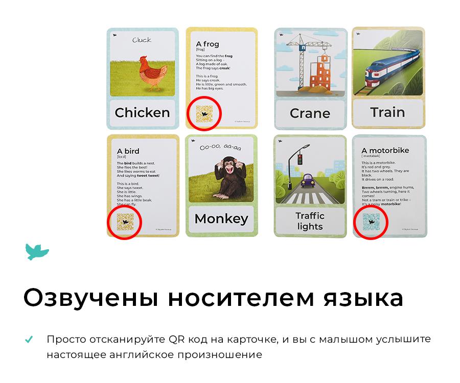 Transport Умница Изучение английского языка по карточкам с озвучкой S25 9785916663600 фотографии и картинки