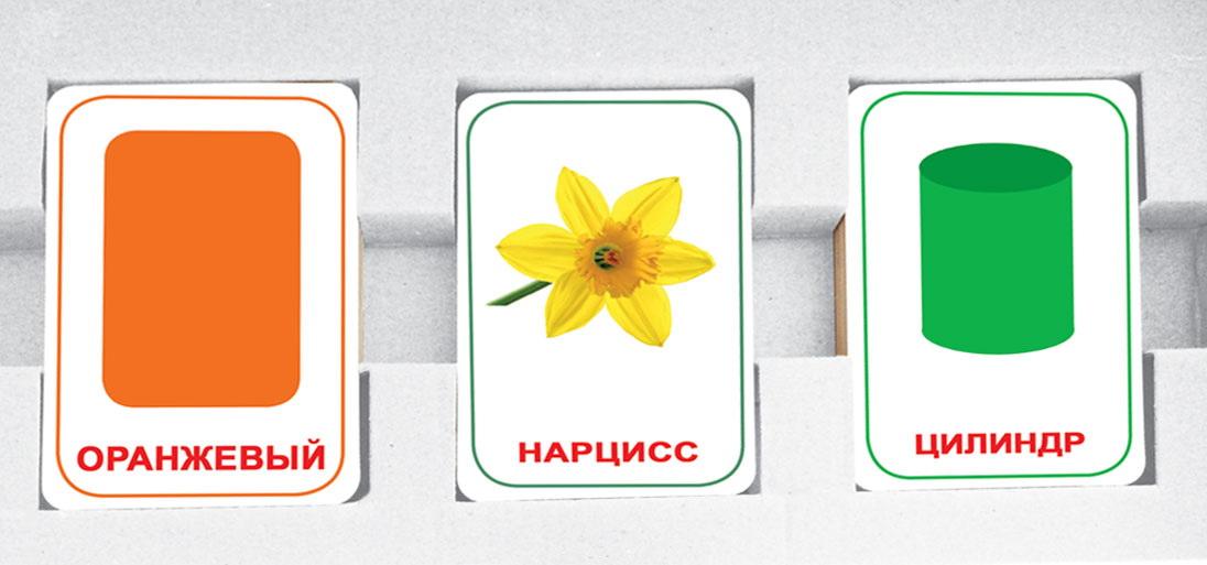 Парочки выпуск 4 (Мемо для детей) Вундеркинд с пеленок Подарочный набор развивающих карточек 60 шт.  4612731631826 фотографии и картинки