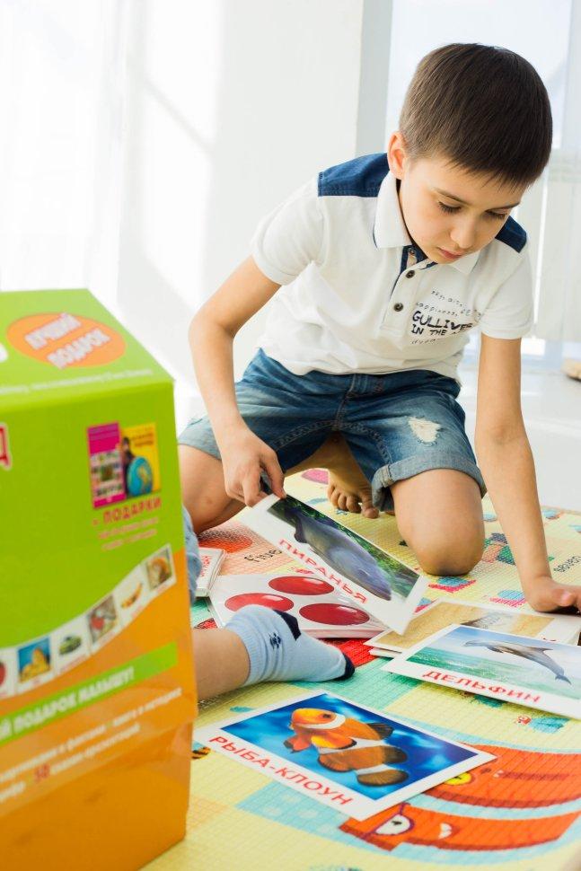 Мегачемодан Вундеркинд с пелёнок Подарочный набор развивающих карточек по методике Домана 19,5х16,5 см 320 шт.